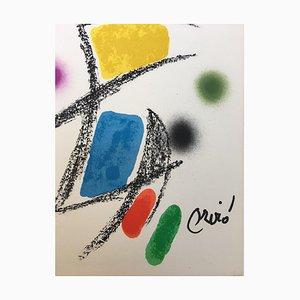 Maravillas con Variaciones Acrosticas 6 by Joan Miró, 1975