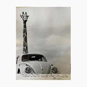 Mythical Original Volkswagen Beetle Print by Jean-Pierre Ronzel, 1961