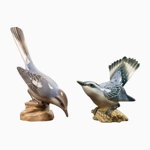 Dänische Vögel aus Porzellan von Dahl Jensen, 1930er, 2er Set