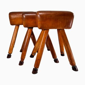 Patinated Cognac Leather Covered Beechwood Gym Horses, 1950s, Set of 3