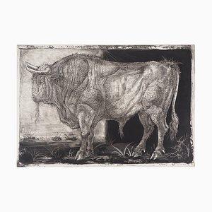 Homenaje grabado vintage a Pablo Picasso de Pierre-Yves Tremois