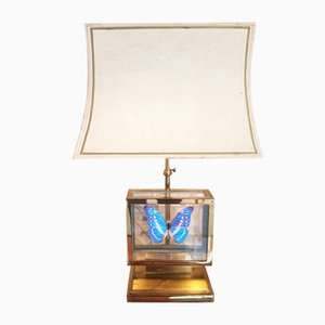 French Gilt Brass Window Box and Exotic Butterfly Table Lamp, 1980s