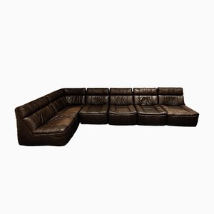 Vintage Leather Modular Sofa from Rolf Benz, 1970s, Set of 6