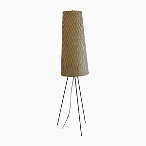 Mid-Century Tripod Floor Lamp, Austria, 1960s