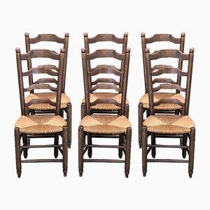 Chaises de Salon Rustiques en Hêtre Mulch, 1950s, Set de 6