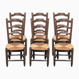 Rustic Mulched Beech Dining Chairs, 1950s, Set of 6
