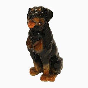 Rottweiler Hund aus Keramik, 1960er
