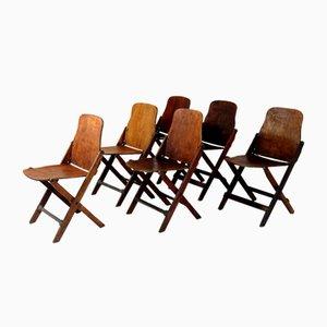 Sillas plegables de American Seating Company Grand Rapids, años 40. Juego de 6