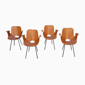 Model Medea Dining Chairs by Vittorio Nobili for Medea, 1950s, Set of 4