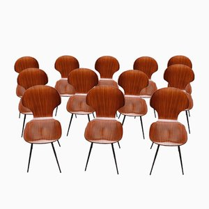 Bent Plywood and Iron Dining Chairs by Carlo Ratti, 1950s, Set of 12