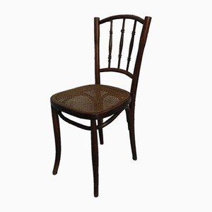 Beech Bar Chairs, 1920s, Set of 5