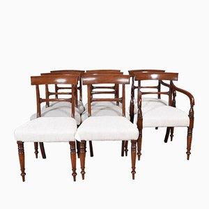 Antike englische Regency Esszimmerstühle aus Mahagoni, 8er Set