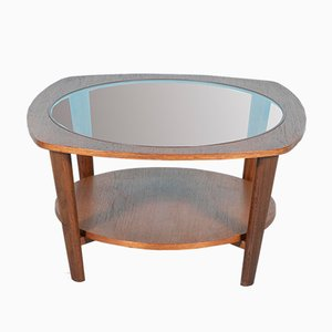 Vintage Round Teak, Oak, and Glass Coffee Table, 1960s