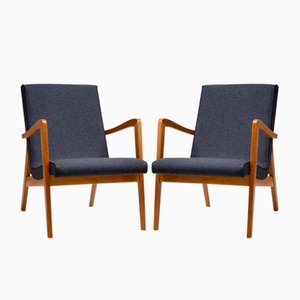 Type 300-138 Armchairs from Bystrzyckie Furniture Factory, 1960s, Set of 2