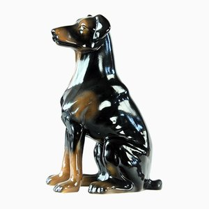 Vintage Doberman Pitcher Statue in Porcelain from Jikohera, Czechoslovakia, 1960s