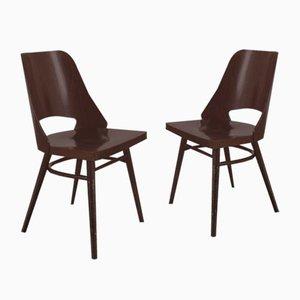 Esszimmerstühle von TON, 1960er, 2er Set