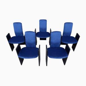Sillas de comedor de madera lacada en negro y terciopelo azul eléctrico de Arflex, años 60. Juego de 5