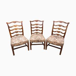Antike Sezessionistische Eichenholz Stühle von Adolf Loos, 1900er