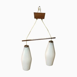 Vintage Danish Style Hanging Chandelier 2 Glass Lampshades, 1960s