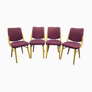 Bugholz Esszimmerstühle von Antonín Šuman, Tschechoslowakei, 1960er, Set of 4