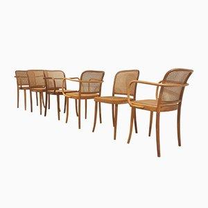 Chaises de Salon en Bois Courbé et Jonc par Josef Hoffmann pour Ligna, 1979, Set de 6