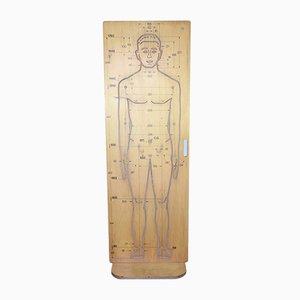 Metal and Wood Human Figure Panel from Tecno, 1960s