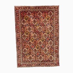 Vintage Middle Eastern Carpet, 1950s