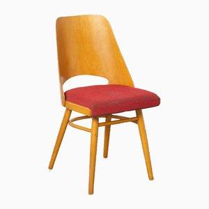 Nr. Chaise d'Appoint 514 par Oswald Haerdtl pour TON, Czechoslovakia, 1960s