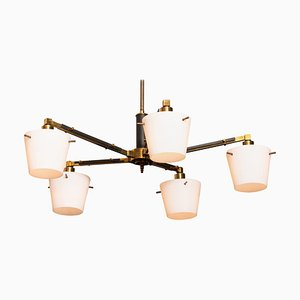 Brass Chandelier with Frosted Glass Shades by Stilnovo, Italy, 1950s