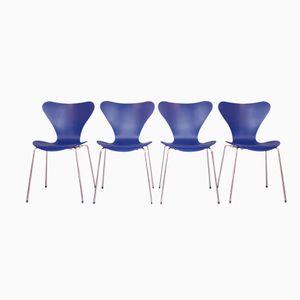 Blaue 3107 Butterfly Chairs von Arne Jacobsen für Fritz Hansen, 4er Set