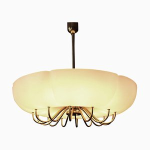 German Ballroom Shell Brass Chandelier, 1950s