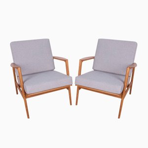 Model 300-139 Armchairs from Swarzedzka Furniture Factory, 1960s, Set of 2