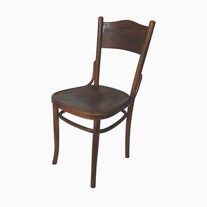 Polnischer Stuhl von Thonet, 1920er
