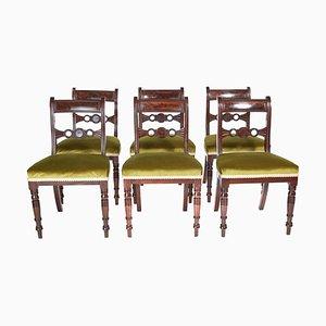Antike Regency Mahagoni Esszimmerstühle, 6er Set