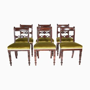 Antique Regency Mahogany Dining Chairs, Set of 6