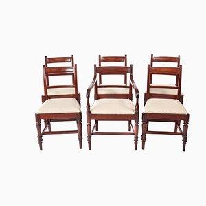 George III Esszimmerstühle aus Mahagoni, 6er Set