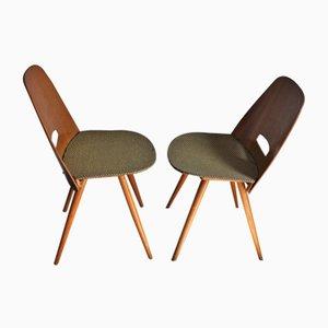 Esszimmerstühle von Francis Jirák für Tatra, 1960er, 2er Set