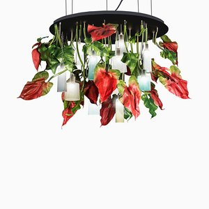 Flower Power Round Anthurium Chandelier Medium with Mun Glass Lamps from Vgnewtrend