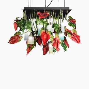 Flower Power Quadratischer Anthurium Kronleuchter mit Lampen aus Mun Glas von Vgnewtrend