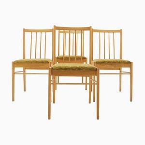 Mid-Century Dining Chairs, Czechoslovakia, 1960s, Set of 4
