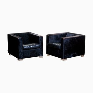 Black Club Chairs in Pony & Leather by Rodolfo Dordoni for Minotti, 1999, Set of 2