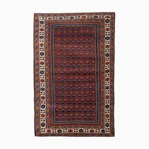 Vintage Caucasian Chichi Rug, 1970s