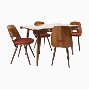 Dining Table & Chairs Set from Tatra Pravenec, 1960s, Set of 8