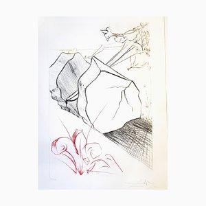 Salvador Dali - The Marvelous Steps - Grabado original firmado a mano 1975