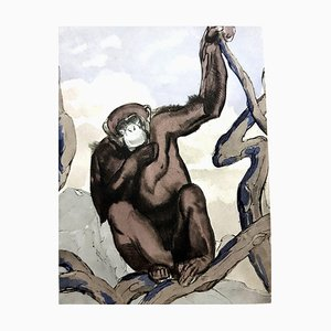 Paul Jouve - Chimpanzee - Original Engraving 1950