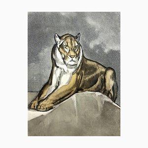 Paul Jouve - Tiger - Original Gravur 1950