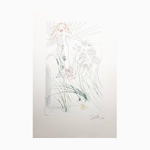 Salvador Dali - The Beloved Feeds Among the Lilies - Signed Aquatint 1971