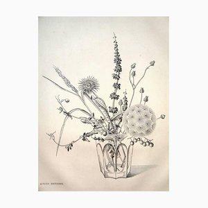 Gravure Rare - Kiyoshi Hasegawa - Fleurs Automne