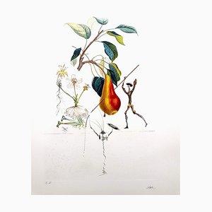 Litografía manuscrita original Salvador Dali - Don Quixote Pear - 1969