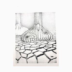 Gochka Charewicz - Herbarium - Signierte Originale Lithographie